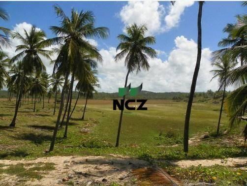Fazenda à venda, 380000 m² por r$ 3.040.000 - litoral norte - jandaíra/ba - Foto 4