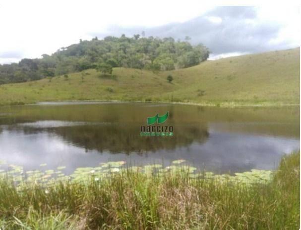 Linda fazenda à venda, 8000000 m² por r$ 6.300.000 - inocoop - itamaraju/ba