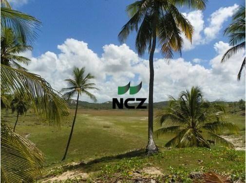 Fazenda à venda, 380000 m² por r$ 3.040.000 - litoral norte - jandaíra/ba - Foto 3