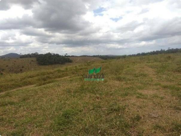 Linda fazenda à venda, 8000000 m² por r$ 6.300.000 - inocoop - itamaraju/ba - Foto 6