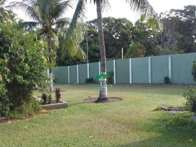 Chácara à venda, 4960 m² por r$ 800.000,00 - barra do jacuípe - camaçari/ba - Foto 8