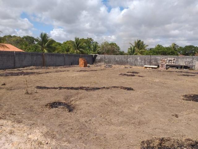 Vendo Terreno 30x30 em Jacumã - Foto 5
