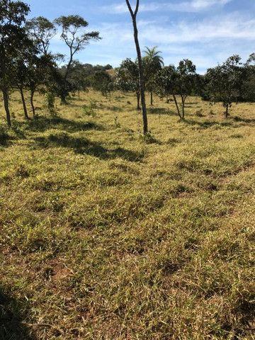Fazenda 65 Ha em Onça de Pitangui - MG - Foto 5