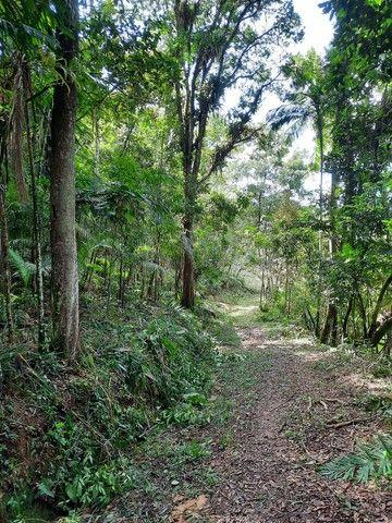 Sítio  em Barra Velha SC - Foto 16