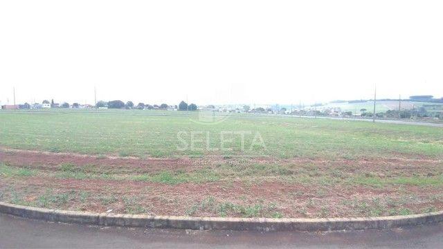 Terreno à venda, Floresta, CASCAVEL - PR - Foto 2