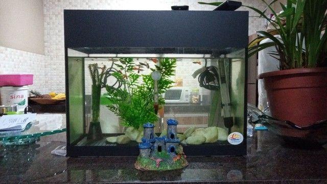 Vendo aquário  - Foto 2