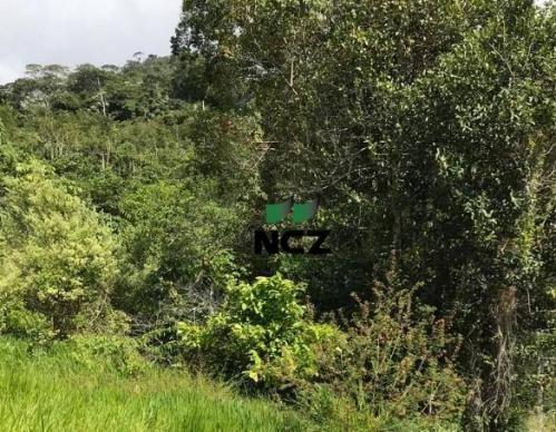 Fazenda à venda, 2460000 m² por r$ 800.000,00 - zona rural - buerarema/ba - Foto 2