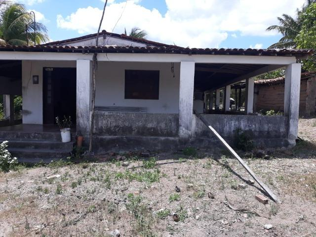 Chã de Alegria= Vend. 125 mil reais=10 Hect.=Casa,Pastos,Energia,Água e mais - Foto 2