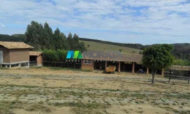 Fazenda pecuária - 220 hectares - belo vale (mg) - Foto 11