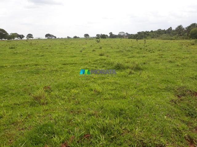 Fazenda à venda - 03 hectares - araçaí (mg) - Foto 7