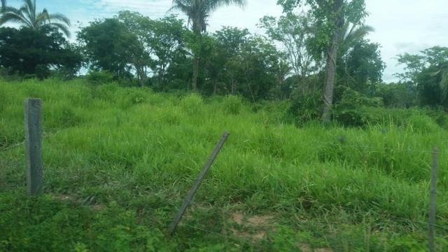 Fazenda - 1450 Hectares - Nossa Senhora do Livramento/MT - Foto 7
