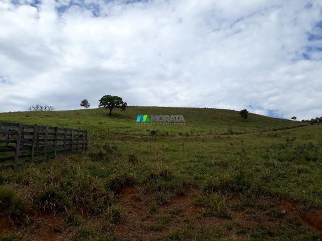 Fazenda à venda - 90 hectares - lavras (mg)