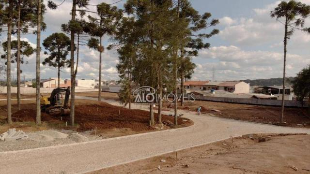Terreno à venda, 157 m² por r$ 209.462,55 - pinheirinho - curitiba/pr