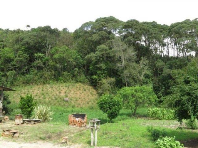 Chácara para Venda, 71.959,20 m², Piên / PR, bairro Poço Frio, 3 dormitórios - Foto 6