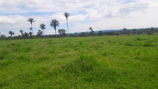Troco Paraná, 350 alqueires, pecuária, Região de Tangará/ MT