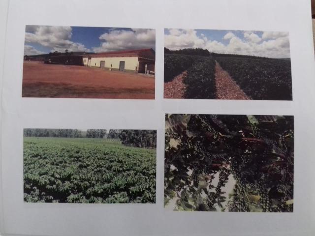 Fazenda Completa em Capelinha/MG - Foto 11