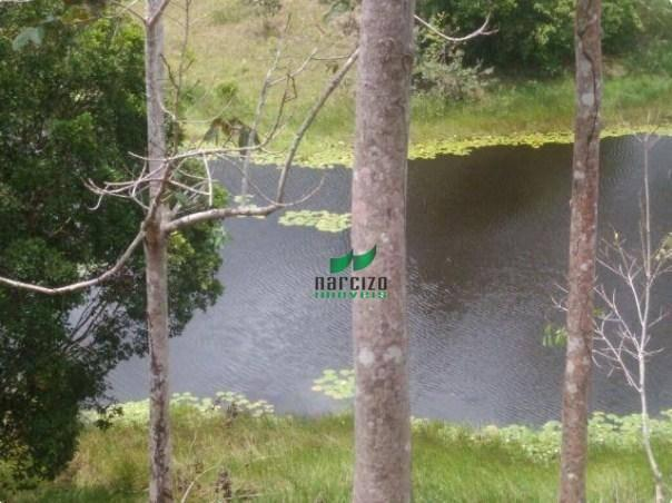 Linda fazenda à venda, 8000000 m² por r$ 6.300.000 - inocoop - itamaraju/ba - Foto 14