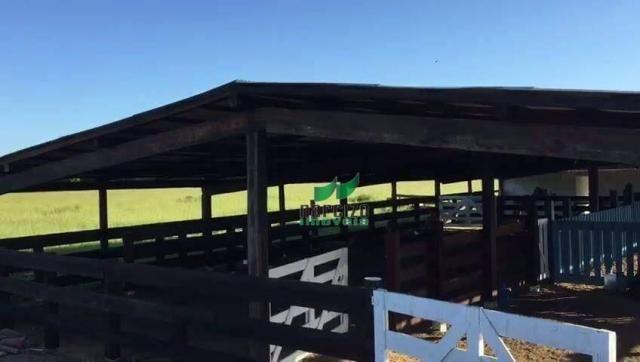 Fazenda rural à venda, belmonite, belmonte. - Foto 13