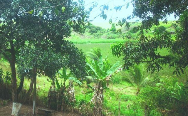 Terreno 450 m2 Condomínio Vale do Jacarandá - Foto 14