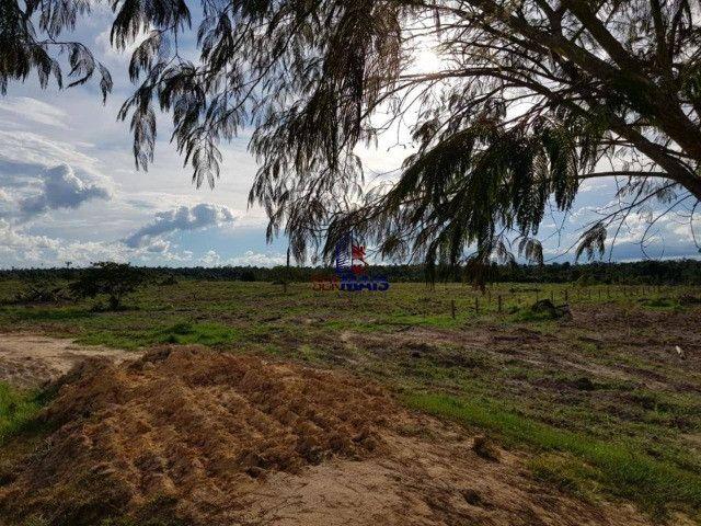 Fazenda à venda por R$ 2.000.000 - Centro - Seringueiras/RO - Foto 8