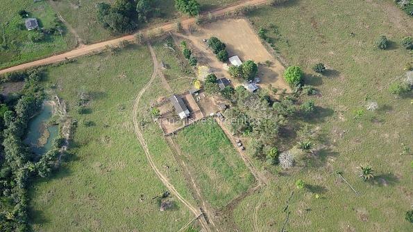 Fazenda com Curral e Pasto - Prox. Rio Preto - Foto 8