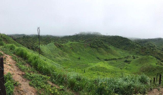Fazenda 300 hec no Maranhão - Foto 4