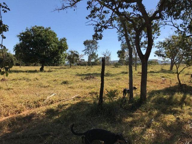 Fazenda 65 Ha em Onça de Pitangui - MG
