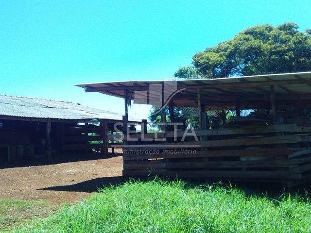 Sítio à venda, Nova Cidade, CASCAVEL - PR - Foto 8