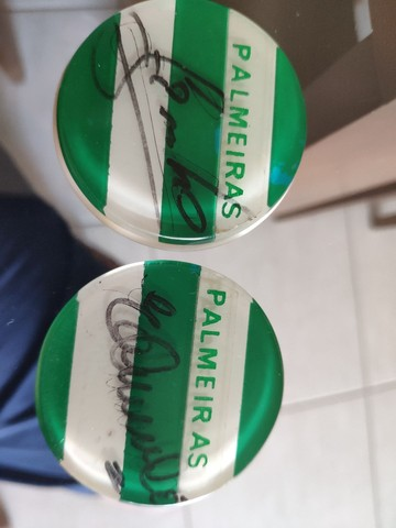 Palmeiras Jogo de Botão Autógrafados Campeão 1994 - Foto 3