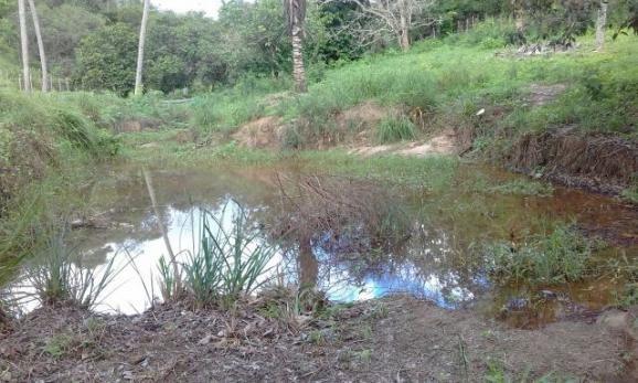 Rancho em Vitoria de Sto Antão - Foto 6