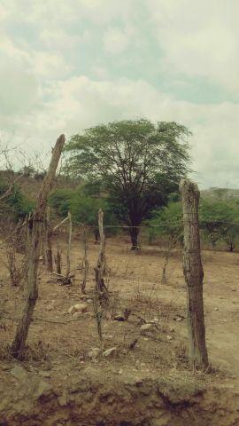 Terreno no sitio malhada grande