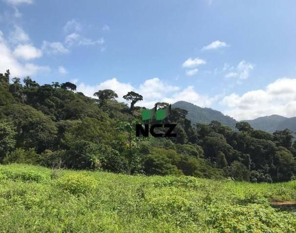 Fazenda à venda, 2460000 m² por r$ 800.000,00 - zona rural - buerarema/ba