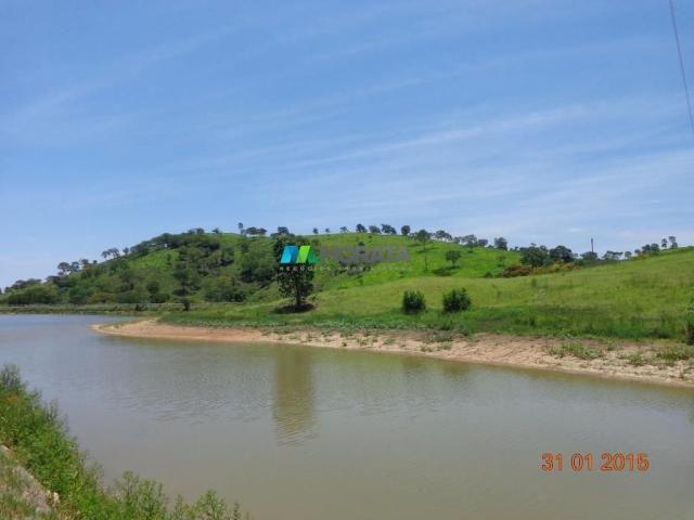 Fazenda à venda - 1.180 hectares - região jequitibá (mg) - Foto 19