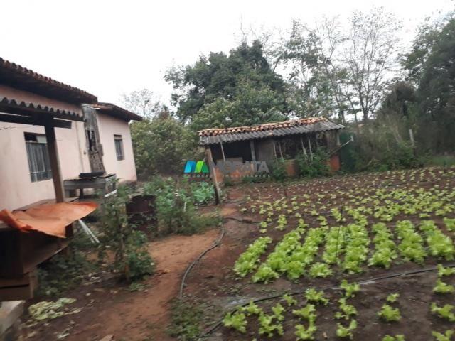 Fazendinha - 08 hectares - paraopeba (mg) - Foto 2