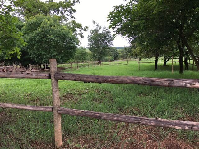 Chácara em Bela Vista de Goiás com casa - Foto 10
