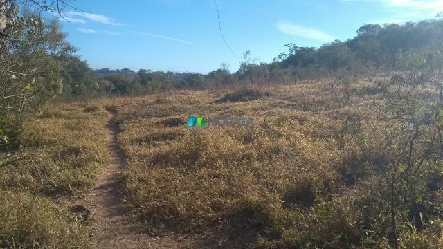 Fazenda à venda - 40 hectares - lavras (mg) - Foto 5