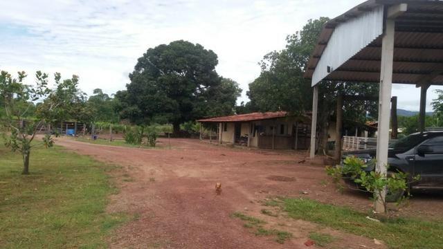 Fazenda - 1450 Hectares - Nossa Senhora do Livramento/MT - Foto 2