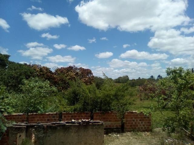 Vendo ou troco terreno / sítio em Alagoinhas Bahia - Foto 2