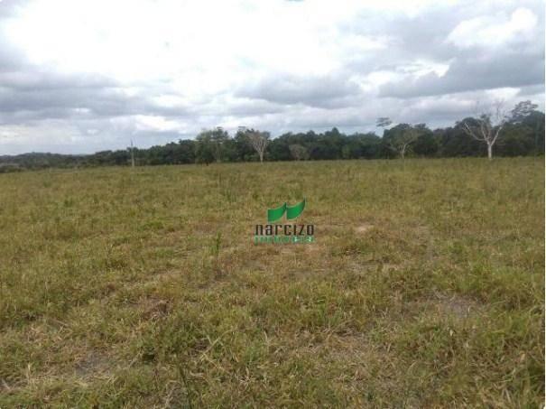 Linda fazenda à venda, 8000000 m² por r$ 6.300.000 - inocoop - itamaraju/ba - Foto 8