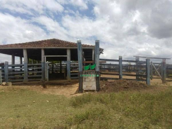 Linda fazenda à venda, 8000000 m² por r$ 6.300.000 - inocoop - itamaraju/ba - Foto 19