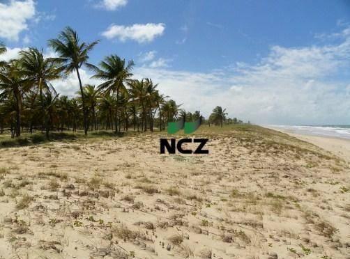 Fazenda à venda, 380000 m² por r$ 3.040.000 - litoral norte - jandaíra/ba - Foto 19