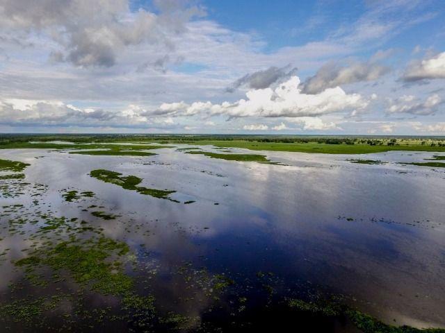 Fazenda com 140 hectares no Passarão, a 65 km de Boa vista/RR, ler descrição do anuncio - Foto 3