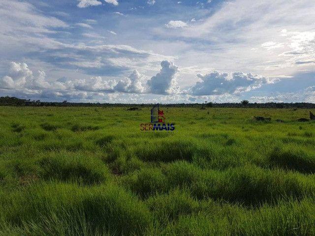 Fazenda à venda por R$ 2.000.000 - Centro - Seringueiras/RO - Foto 6