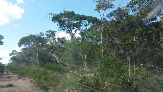 Fazenda à venda, 150000000 m² por R$ 55.809.000,00 - Zona Rural - Pilão Arcado/BA - Foto 10
