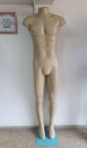 Manequim meio corpo  - Foto 4
