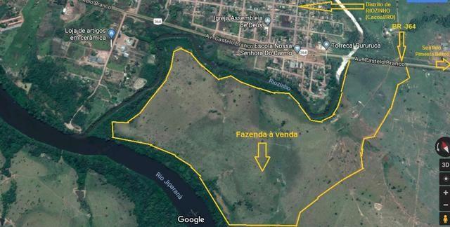 Fazenda, Cacoal/RO, Pimenta Bueno Rondônia
