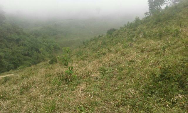 Fazenda 300 mts da BR 116 - Foto 5