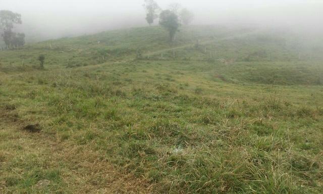 Fazenda 300 mts da BR 116 - Foto 8