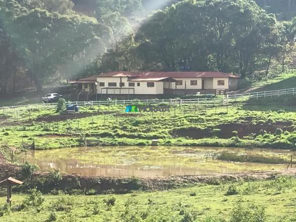 Fazenda à venda - 40 hectares - região santana dos montes (mg) - Foto 12