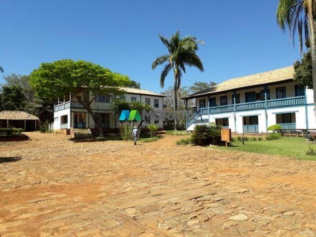 Fazenda à venda - 401 hectares - paraopeba (mg) - Foto 4